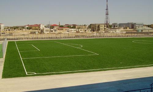 Есть ли место для искусственной травы на футбольном поле?