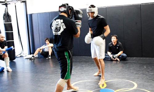 секция бокса